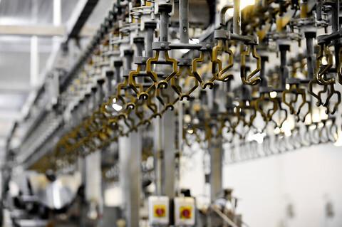 Klæbende kædeolie med gode penetrationsegenskaber til transportkæder indenfor fødevareindustrien - Klüber Lubrication Klæbende kædeolie med gode penetrationsegenskaber