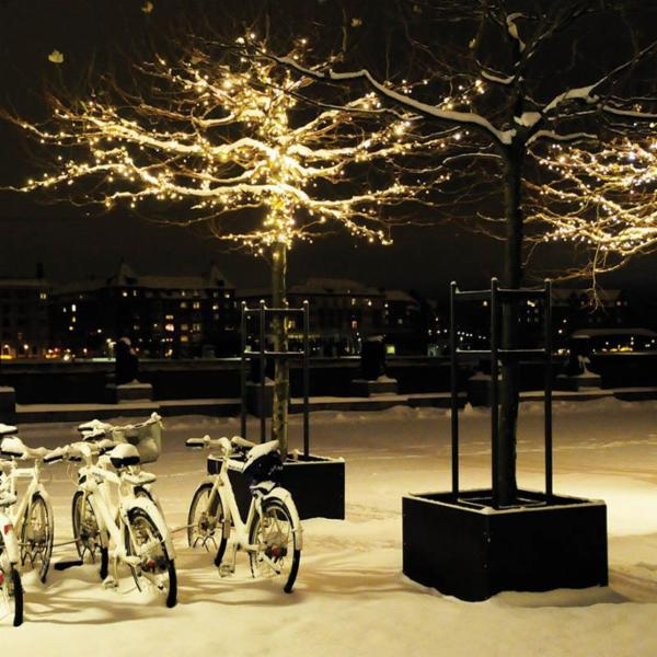 Bring lys ind i den mørke vinter